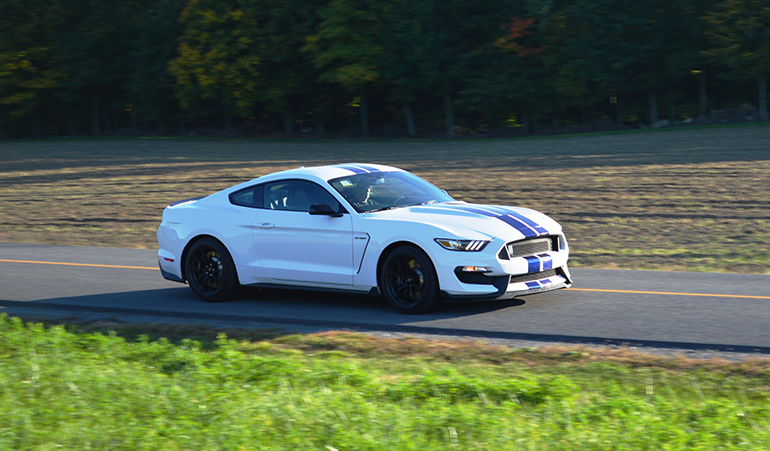 shelby-gt-350-25